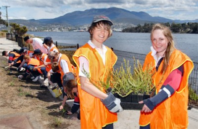 MacKillop College students at work to revegetate the Bellerive foreshore using hardy, low-maintenance native plants.
