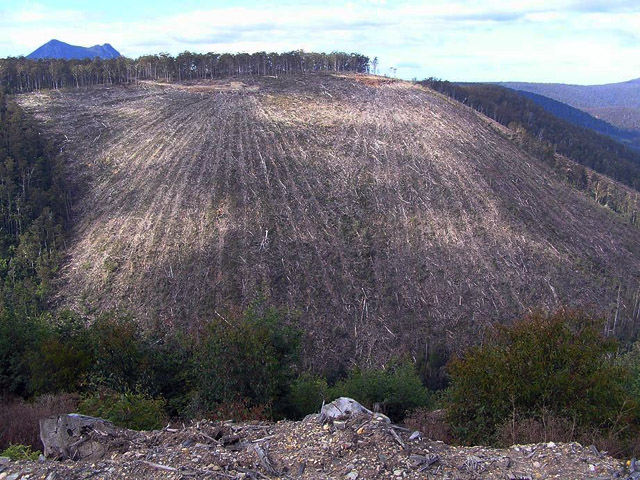 A cable-logged hillside in the upper South Esk catchment. (Photo Lesley Nicklason)