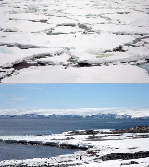 TOP – SEA ICE: Sea ice cover in the Southern Ocean is calculated to have increased slightly in recent years. BOTTOM – LAND ICE: Scientists are concerned that where West Antarctica's land ice meets a warming ocean, it could melt from the edges toward the centre, destablising the whole ice sheet.