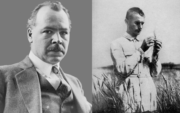 The Russian geneticist Nikolai Vavilov (left) and the man who betrayed him to Stalin, Trofim Lysenko. SOURCE WIKIPEDIA