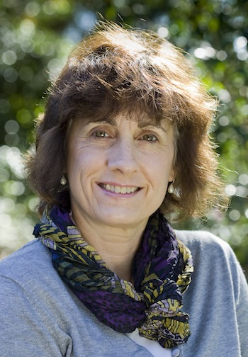 Professor Lesley Hughes, new chair of the Tasmanian Climate Action Council