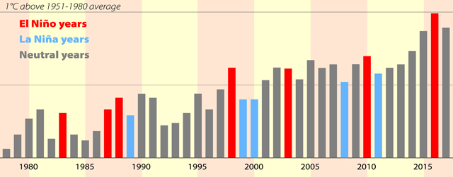 Annual average global surface temperatures over the past 40 years, derived from NASA, Copernicus and WMO data.