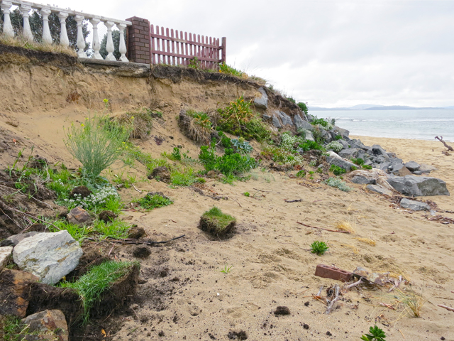 Roches Beach has been losing sand steadily since about 1980.