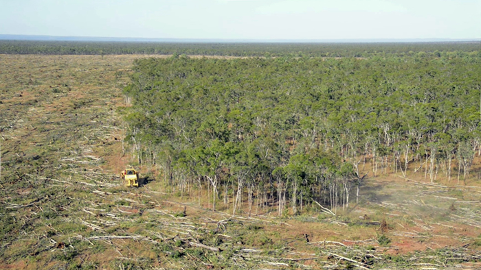 Land-clearing has been proceeding at a record pace in Queensland since restrictions were relaxed in 2013. PHOTO Kerry Trapnell/The Wilderness Society